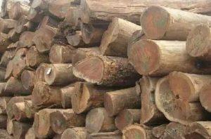 竹木制品加入防霉抗菌剂测试方法-抗菌剂/防霉剂/干燥剂/防霉片厂家批发