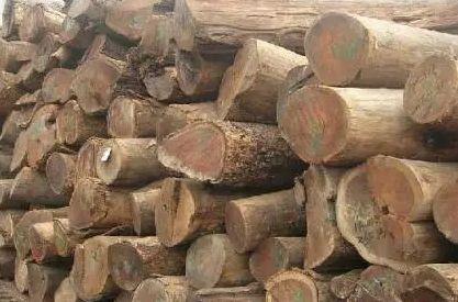 梅雨季节竹木制品怎么防霉?-抗菌剂/防霉剂/干燥剂/防霉片厂家批发