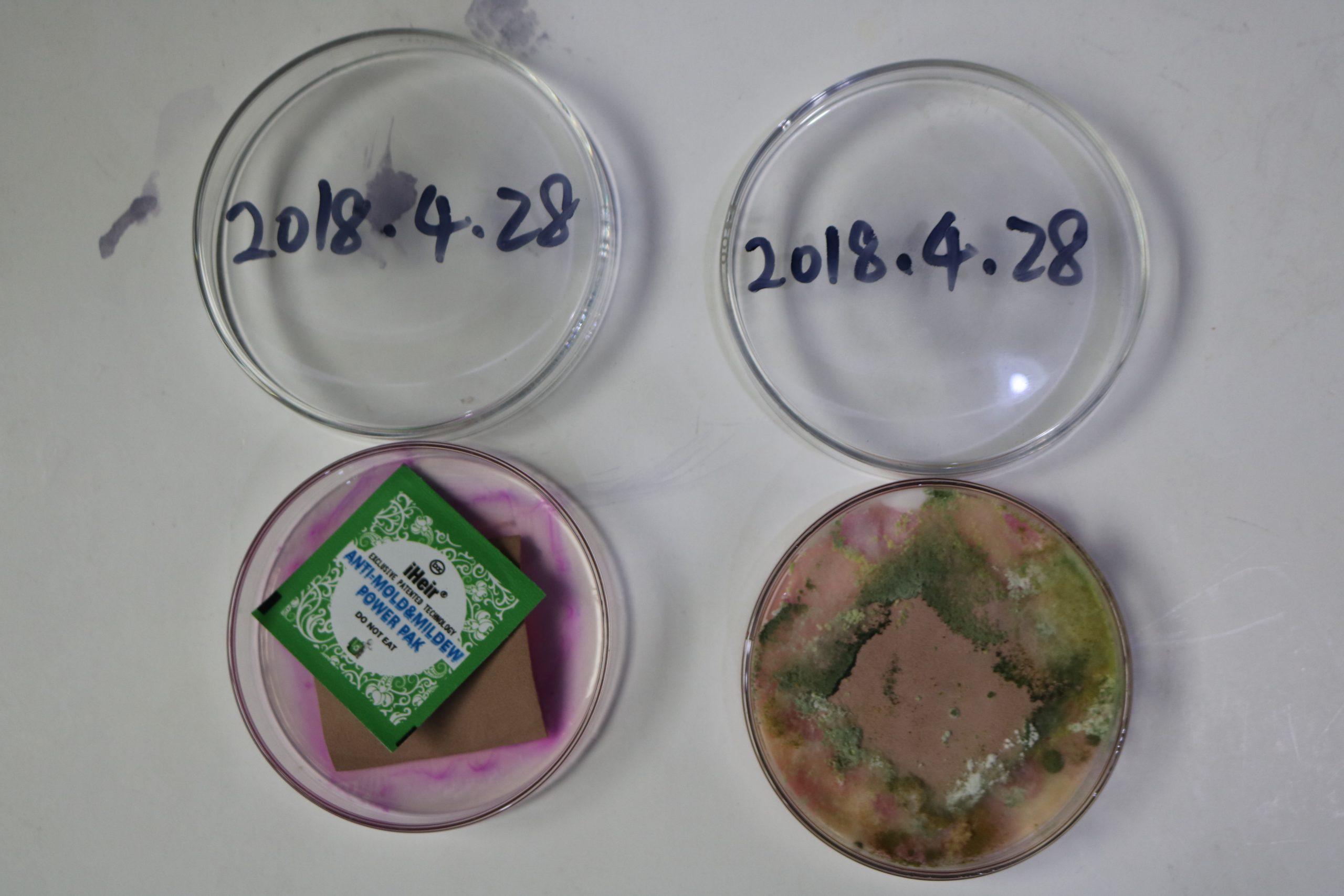 如何正确防霉-抗菌剂/防霉剂/干燥剂/防霉片厂家批发