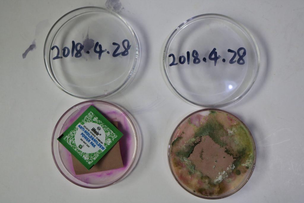 彩印包装袋如何做防霉?-抗菌剂/防霉剂/干燥剂/防霉片厂家批发