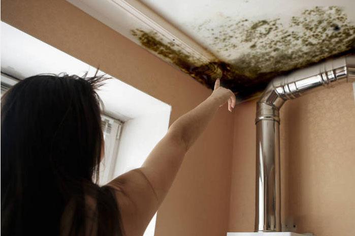 请告诉我如何使用除霉剂,一招解决厨房水槽的霉菌问题-抗菌剂/防霉剂/干燥剂/防霉片厂家批发